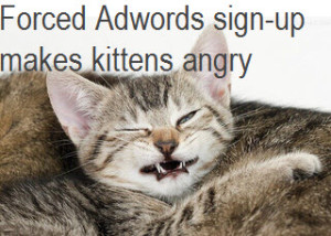 Forced Adwords sign-up makes kittens angry