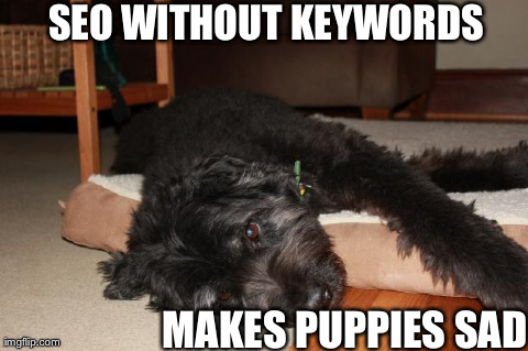 Life without keywords makes puppies sad