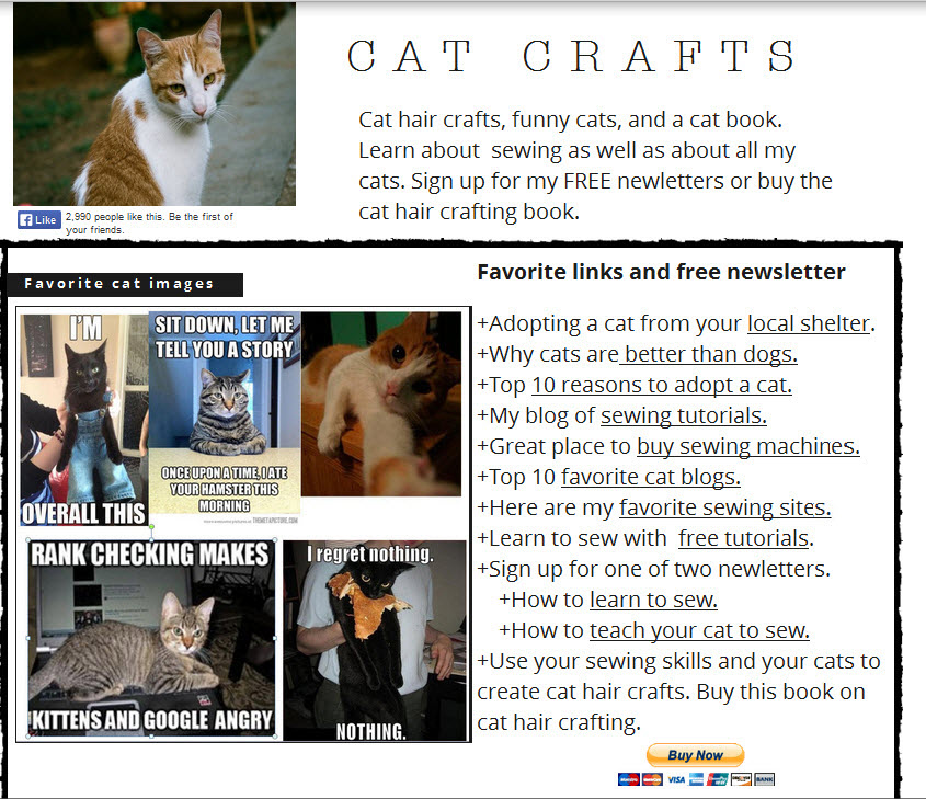 Unfocused cat hair crafting book sale page