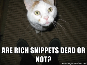 ErnestCat has questions about rich snippets